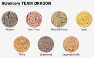 Atraktory Team Dragon